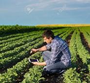 """AGRICOLTURA ED EPIDEMIA. QUADRINI E D'ORSI:""""Le imprese hanno bisogno subito di sostegno. Dopo sarebbe troppo tardi"""""""